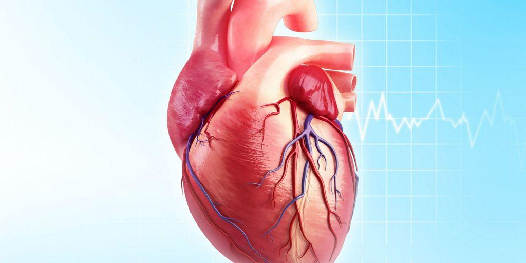 importancia-de-las-pruebas-previas-en-la-aptitud-y-descalificación-en-deportistas-cardiópatas
