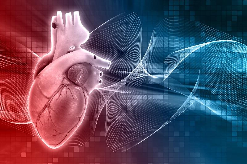 Combatir Las Enfermedades Cardiovasculares Con Ejercicio